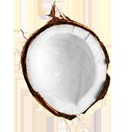 Aura Botanica Kerastase Kosmetyki do włosów